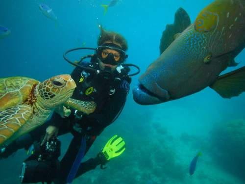 BEST NATIONAL PARKS IN THE WORLD TOP 10Scuba diving on tropical reefs.